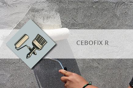 CEBOFIX R